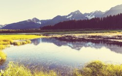 vacaciones de verano en alaska