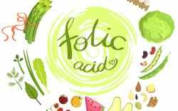 La importancia del ácido fólico