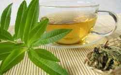 verbena de limon perfume, verbena beneficios, como se toma la verbena?, cedron, propiedades de la verbena, que cura la verbena, ¿Cómo es la verbena y para qué sirve?, ¿Qué cura la hoja de verbena?