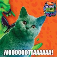 ¡Vota por tu pre-nominado a los Kids' Choice México!