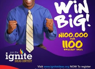 Ibukun Awosika, Babatunde Fashola Partner To Give 1,100 Aspiring Entrepreneurs N100k Interest-Free Loans