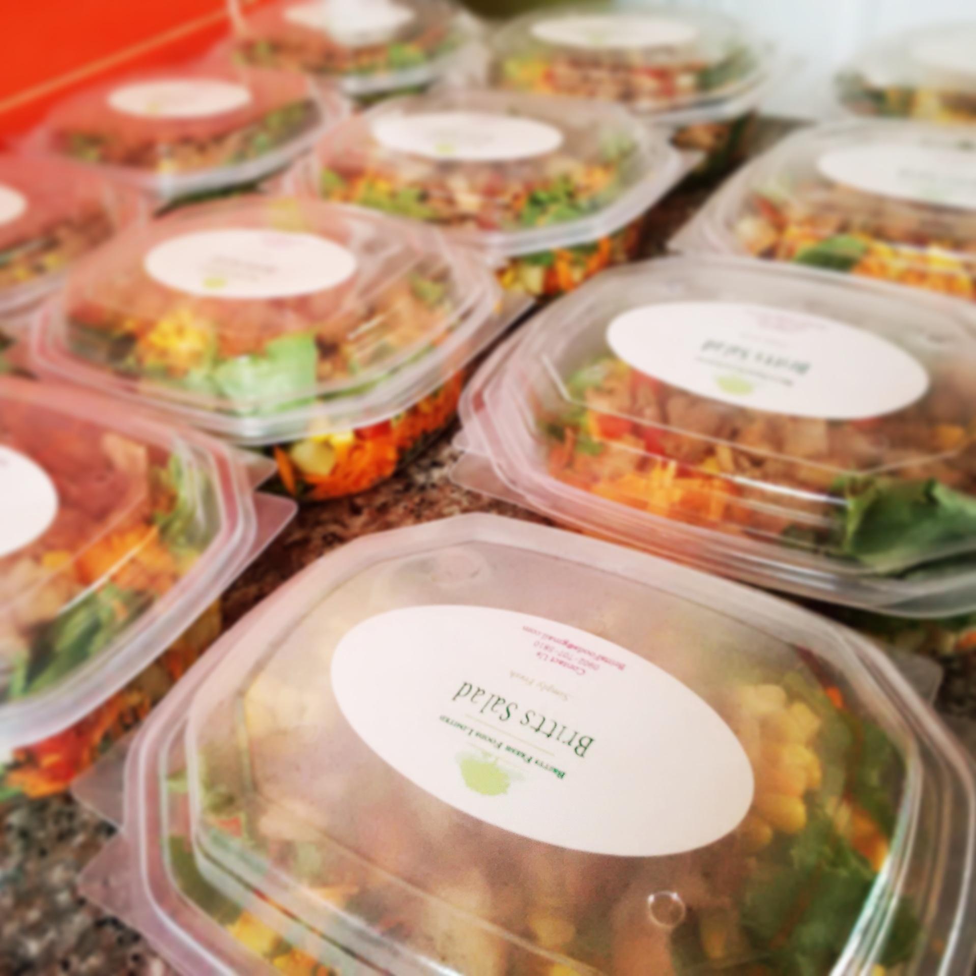 Britts Foods N1800