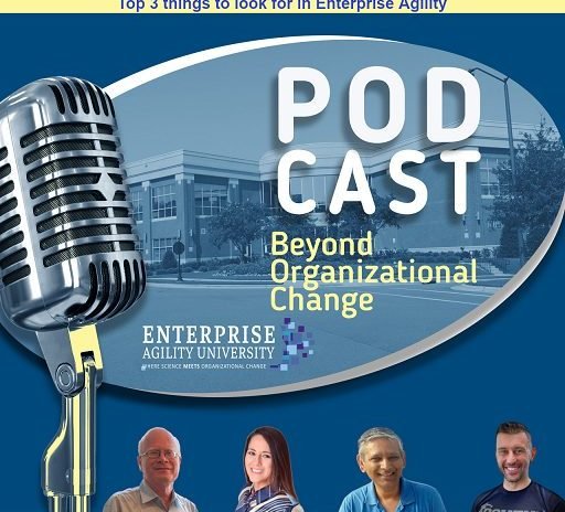 Beyond Organizational Change – Podcast (Ep 02)