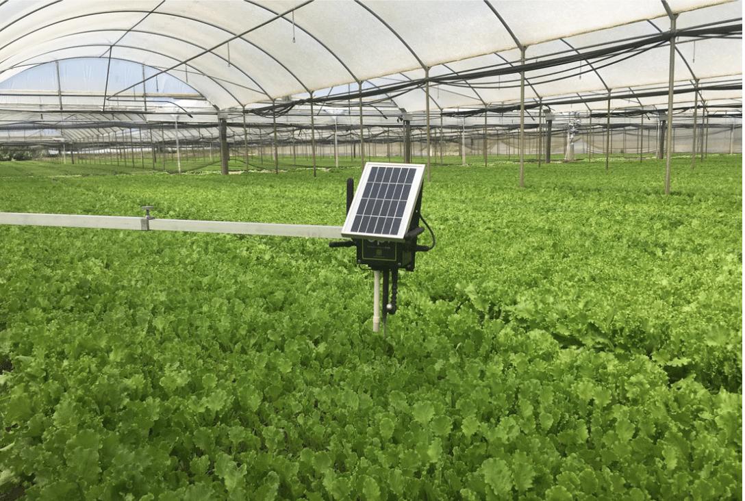 libelium smart agriculture