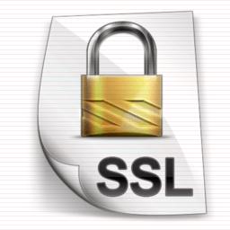 ssl certificate lock icon