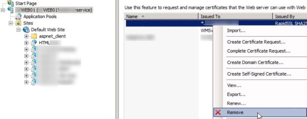 delete-old-ssl-certificate-iis