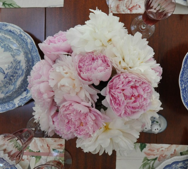 Pink and White peonies together