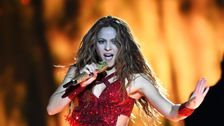 Shakira Says A Pair Of Wild Boars Attacked Her And Tried To Steal Her Stuff   NewsBurrow