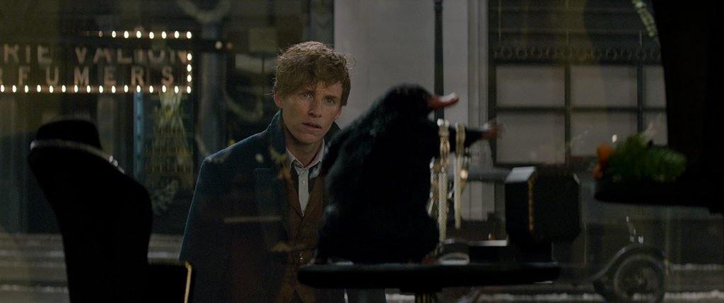 Newt (Redmayne) is wondering if what he's spotted is The Niffler or an exotic, furry jewelry holder.