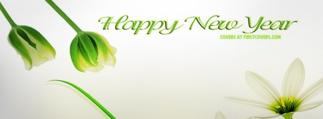 Happy New Year 2013 Facebook Cover