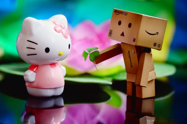 Danbo In Love