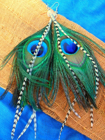 zebra peacock earrings