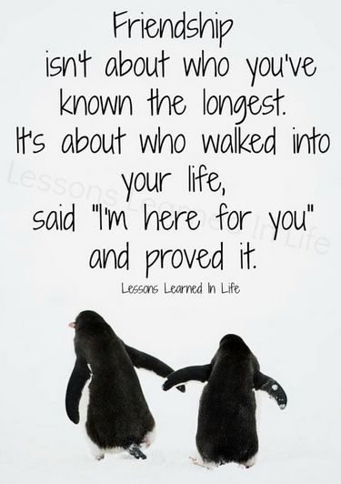 friendship quotes photos