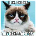 Are you onion lover? Grumpy cat is not