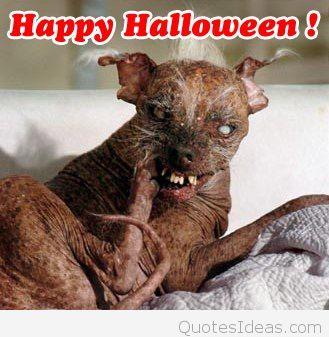 Happy-Halloween-scary-pics