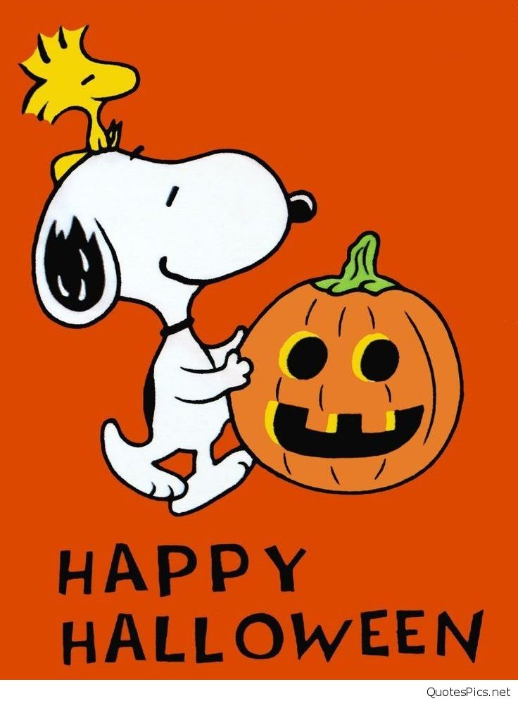 Funny Snoopy Happy Halloween Quote Cartoons