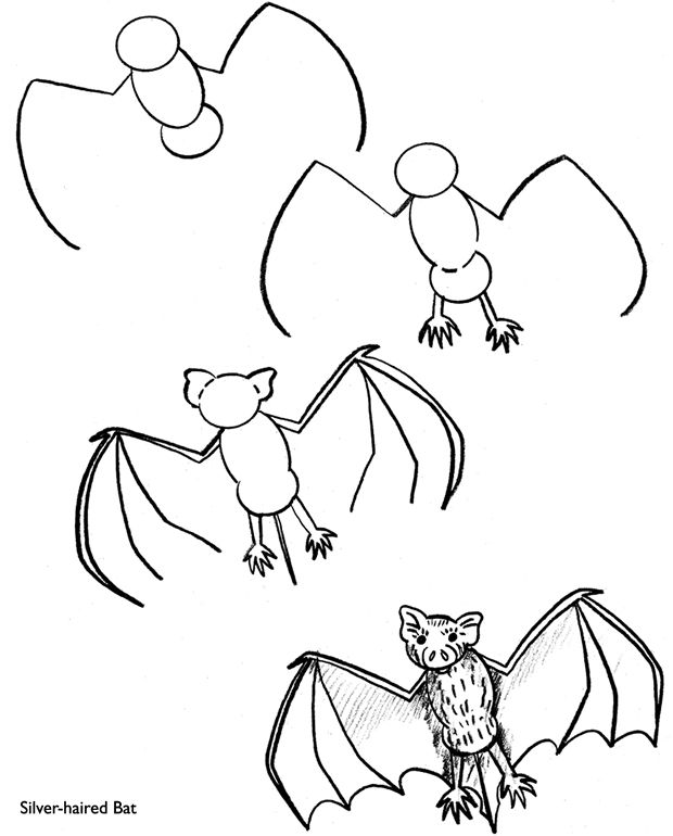 Step by Step spooky bat