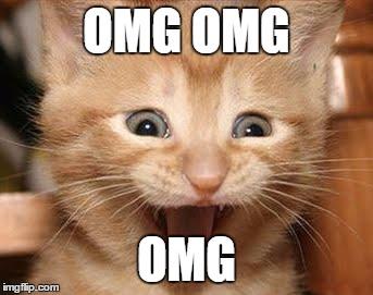 cute-funny-Cat-meme-8