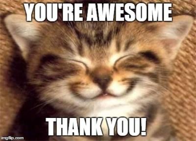 cute kitten smiling thank you meme