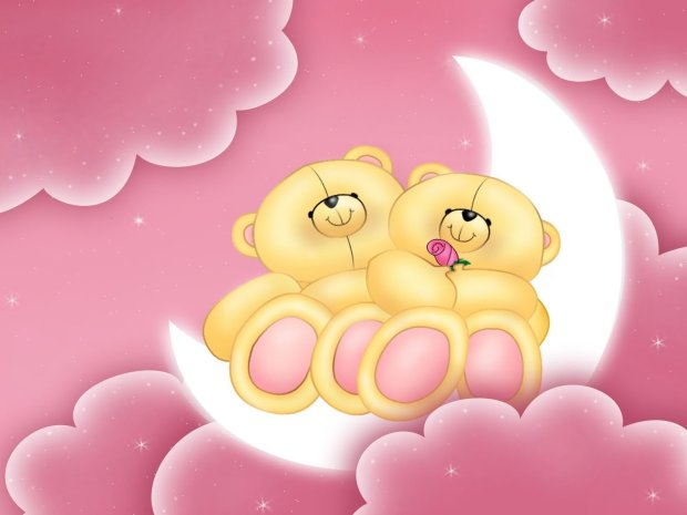 happy valentines day teddy bear hd wallpaper