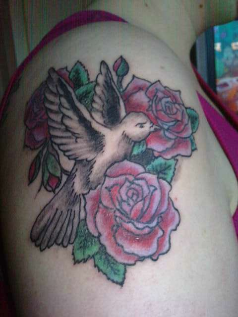 dove and rose women shoulder tattoo