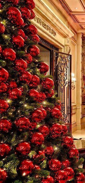 Christmas tree decors with lights