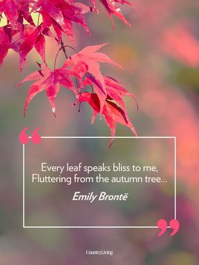 famous autumn quotes