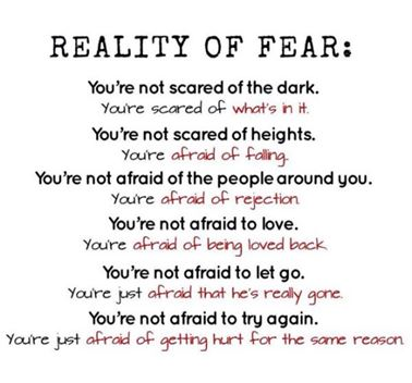 afraid to love quotes tumblr