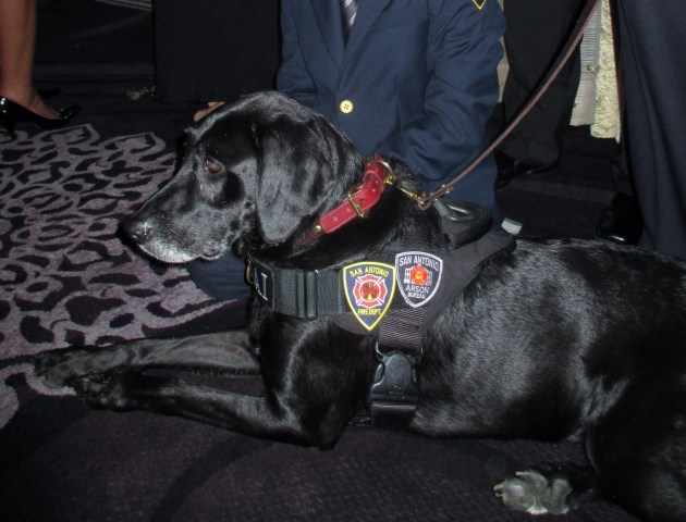 Kai Arson Investigator (photo by Margie Barron)