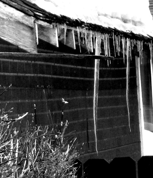 Brian's icicles