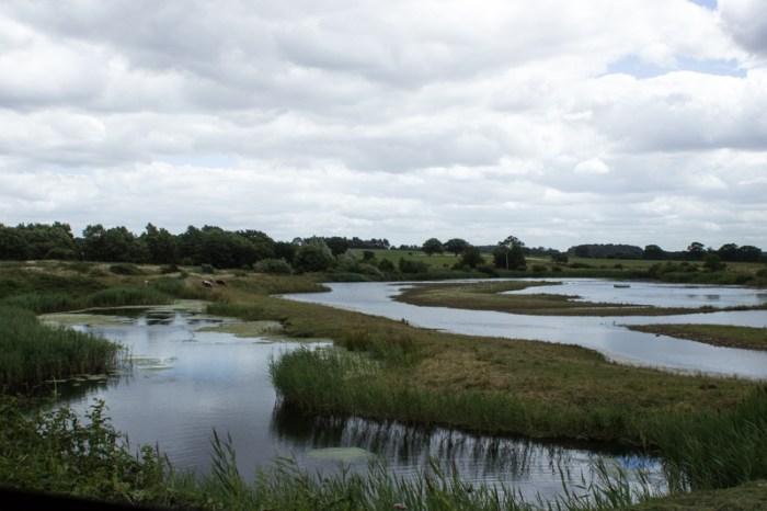 Lakes at Pensthorpe