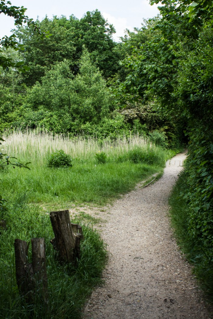 Entering the Stave Hill Ecology Park