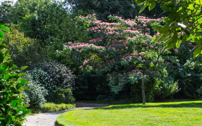 16-9-1-parc-botanique-de-haute-bretagne-lr-8716