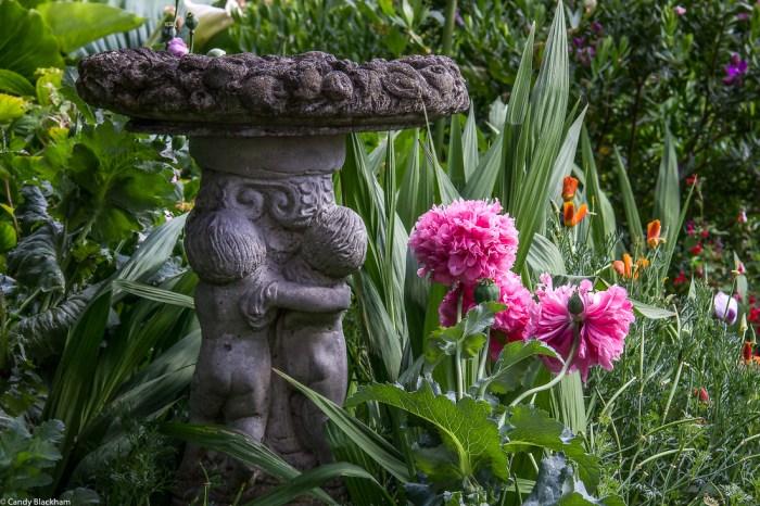 Winterton House Gardens