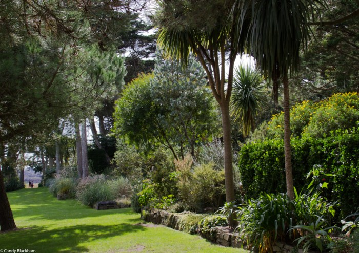 The Borders in the Georges Delaselle Gardens