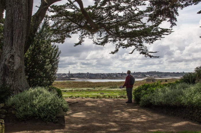 Views from the Georges Delaselle Gardens