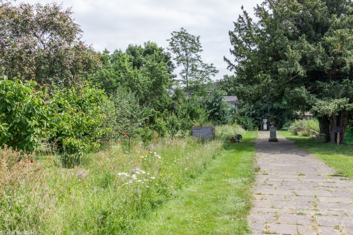 The Community Garden at Rainham Hall