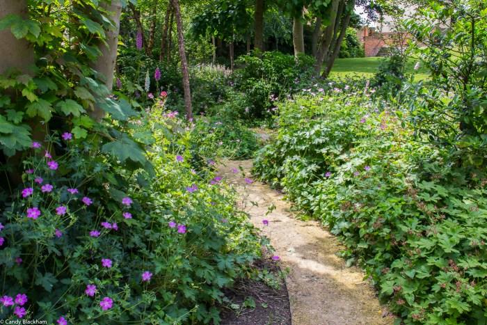 The woodland area at Rainham Hall