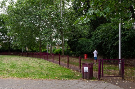 The fenced-off dog-walking area