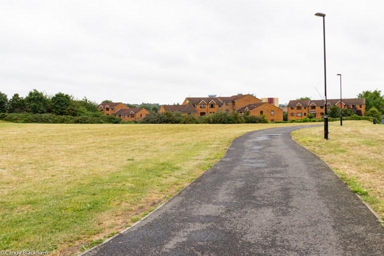 Bridgehouse Meadows in Lewisham