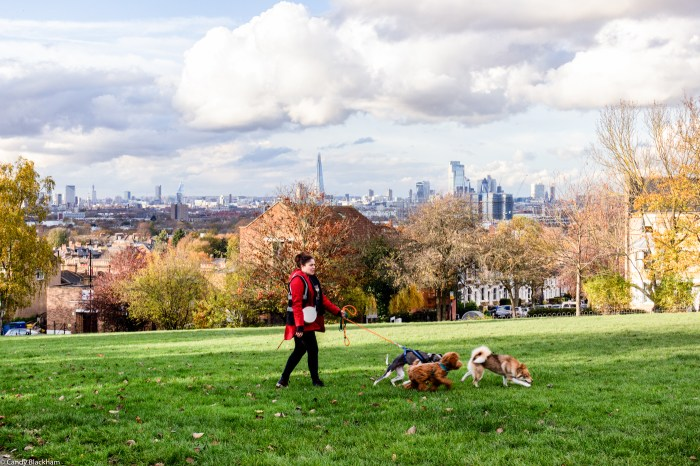Upper Telegraph Hill Park in South East London