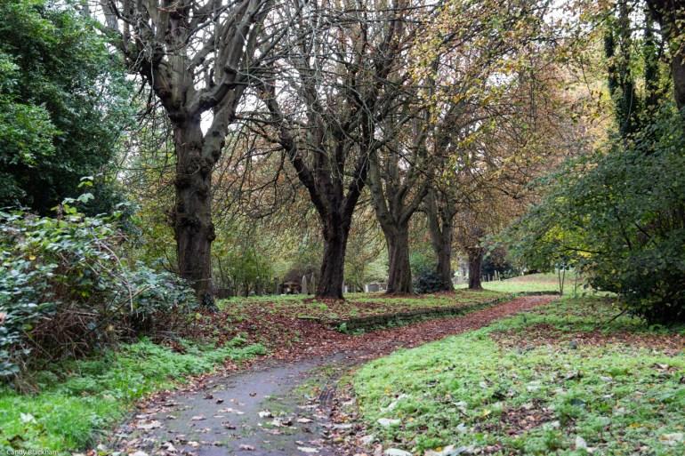 Brockley Cemetery in SE London