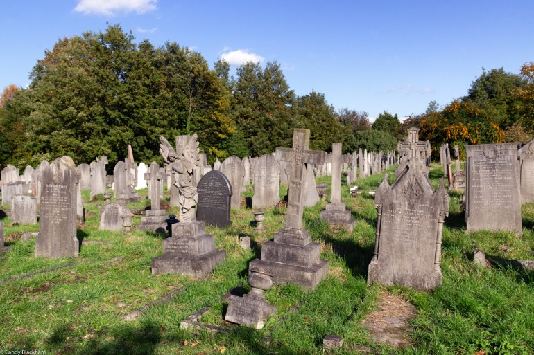 New part of Brockley Cemetery