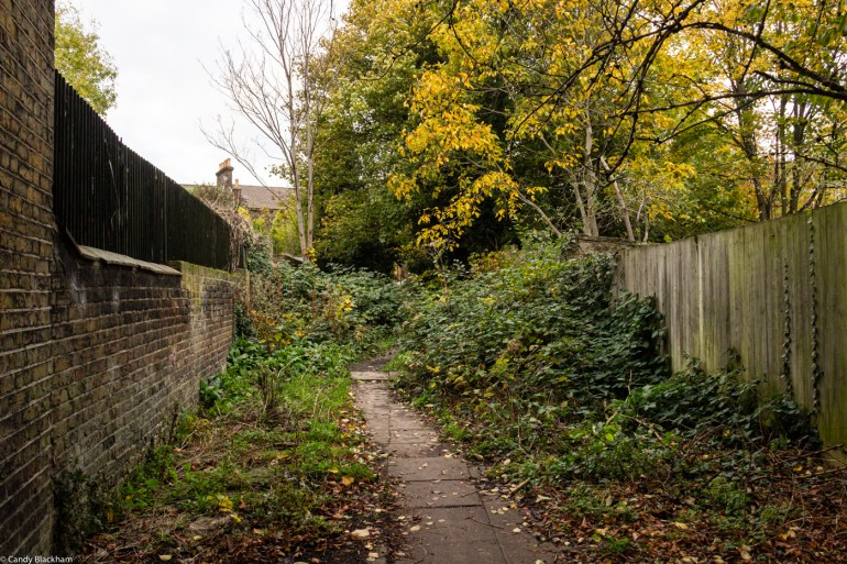 The lane between Wickham Gardens and Harefield Road