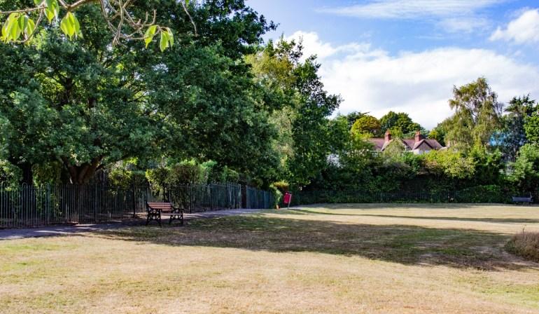 Baxter Fields in Sydenham