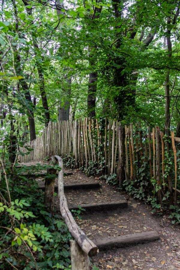 Cox's Walk in Sydenham Hill Woods