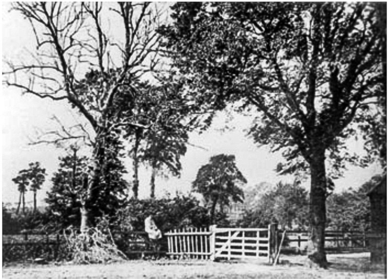 Slagrave Farm c.1880s, www.ideal-homes.org