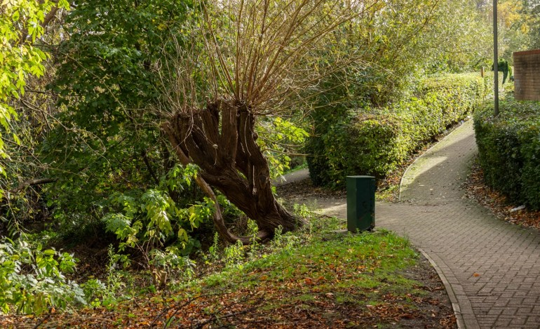 Path down to the river from Meadowview Road