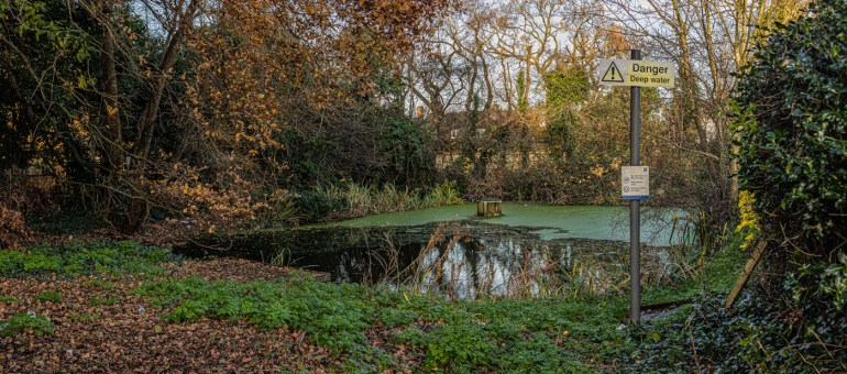 Burnt Ash Pond in Lewisham in the Melrose Close housing estate
