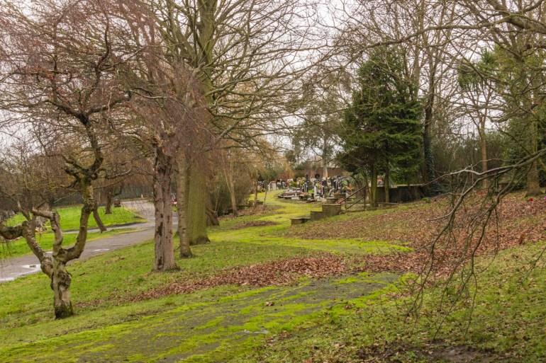 Terracing along the hillside in Grove Park Cemetery